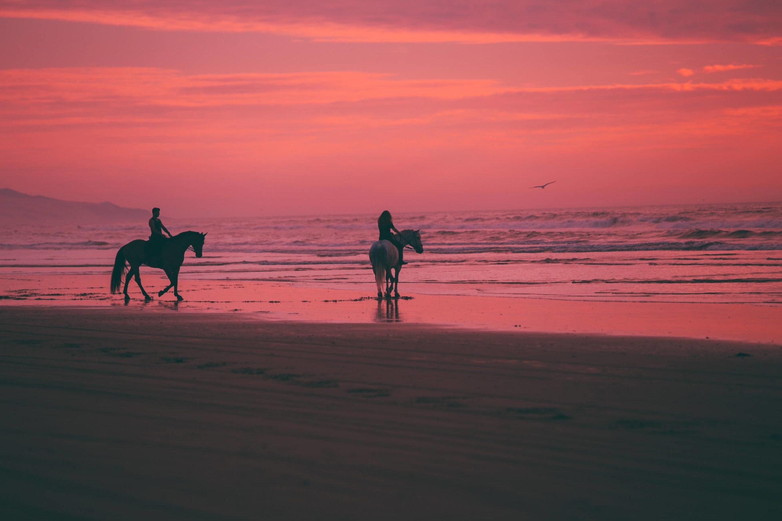 Turnusy oczyszczające z jazdą konną po plaży? 1