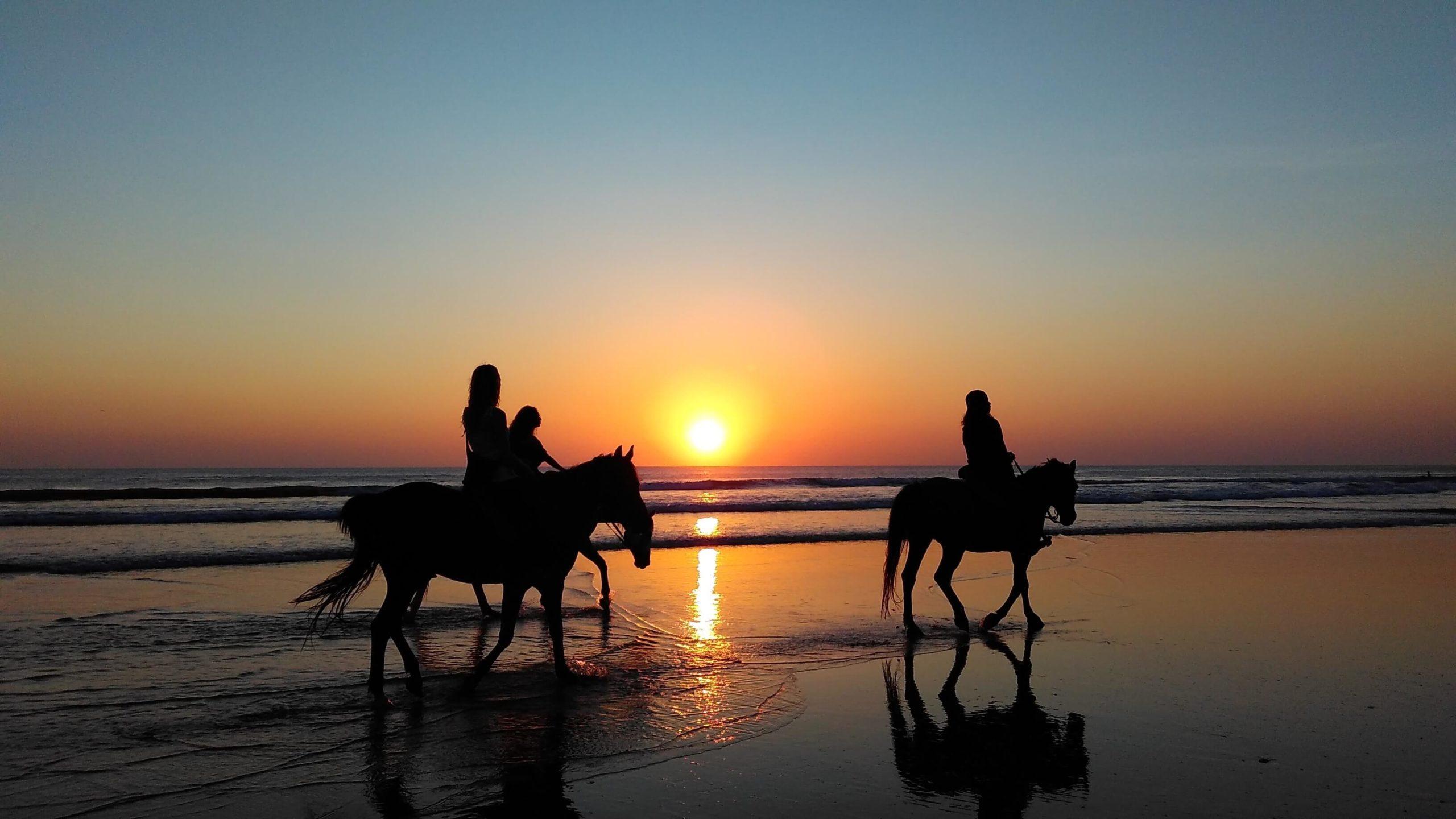 Turnusy oczyszczające z jazdą konną po plaży? 2